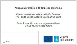Cartel subvención FSE